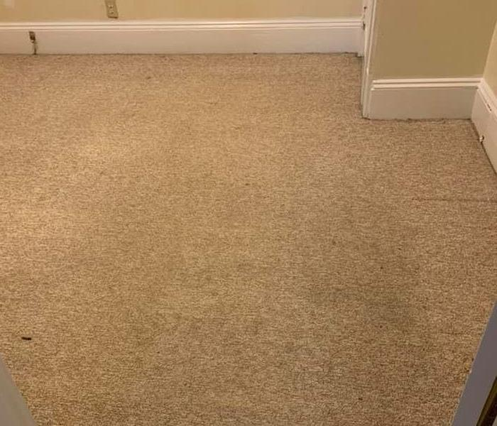 Post carpet cleaning